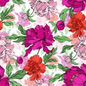 Bazsarózsa virágos botanikus virágok. Fekete-fehér vésett tinta Art. Folytonos háttérmintázat.