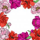 Květinové botanické květiny. Černé a bílé ryté inkoustem. Orámovaná hranatá hranice.