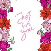 Bazsarózsa virágos botanikus virágok. Fekete-fehér vésett tinta Art. Keretszegély Dísz tér.