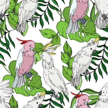 Vector Sky bird cockatoo in a wildlife. Black and white engraved ink art. Seamless background pattern.