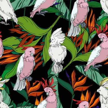 Vector Sky bird cockatoo in a wildlife. Wild freedom, bird with a flying wings. Black and white engraved ink art. Seamless background pattern. Fabric wallpaper print texture. stock vector