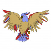 Vector Sky madár kakadu egy vadon élő állatok elszigetelt. Fekete-fehér vésett tinta művészet. Elszigetelt papagájillusztrációs elem.