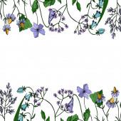 Vektor Wildflowers květinové botanické květiny. Černobílý rytý inkoust. Ozdobný rámeček rámečku.
