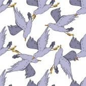 Vektor Sky madár sirály elkülönítve. Fekete-fehér vésett tinta művészet. Zökkenőmentes háttér minta.