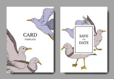 Vector Sky bird seagull isolated. Black and white engraved ink art. Wedding background card decorative border.