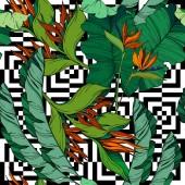 Vektor Trópusi virágos botanikai virágok. Fekete-fehér vésett tinta művészet. Zökkenőmentes háttér minta.
