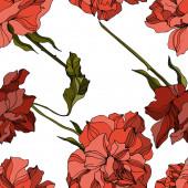 Vektor rózsa virágos botanikai virágok. Fekete-fehér vésett tinta művészet. Zökkenőmentes háttér minta.