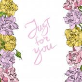 Květinové botanické květiny Vector Rose. Divoký jarní list. Ryté inkoustem. Ozdobný rámeček rámečku.