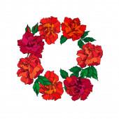 Vector Rose floral botanical flowers. Green ahd red engraved ink art. Frame border ornament square.