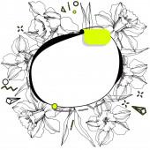 Vektorcímke beállítva. Vésett tintaművészet. Elszigetelt matrica illusztráció elem. Nárcisz virágos botanikai virág.