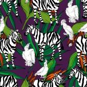 Fényképek Vektor egzotikus zebra nyomat vadállat izolált. Fekete-fehér vésett tinta művészet. Zökkenőmentes háttér minta.