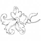 Vektor barokk monogram virágdísz. Fekete-fehér vésett tinta művészet. Elszigetelt díszítőelemek illusztrációs elem.