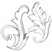 Vektor barockes Monogramm florales Ornament. Schwarz-weiß gestochene Tuschekunst. isolierte Ornamente Illustrationselement.
