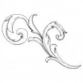 Vektorový zlatý monogram květinový ornament. Černobílý rytý inkoust. Izolované ozdoby ilustrační prvek.
