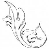 Vektor goldenes Monogramm florales Ornament. Schwarz-weiß gestochene Tuschekunst. isolierte Ornamente Illustrationselement.