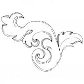 Fotografie Vektorový zlatý monogram květinový ornament. Černobílý rytý inkoust. Izolované ozdoby ilustrační prvek.