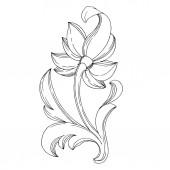 Fotografie Vector Golden monogram floral ornament. Isolated ornament illustration element. Black and white engraved ink art.
