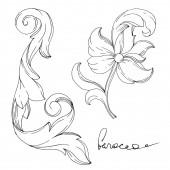 Vektor goldenes Monogramm florales Ornament. Einzelne Ornamente illustrieren Element. Schwarz-weiß gravierte Tuschekunst.