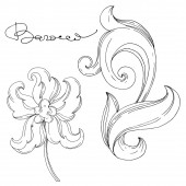 Vektorový zlatý monogram květinový ornament. Izolovaný ozdobný ilustrační prvek. Černobílý rytý inkoust umění.