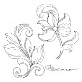 Vector Golden monogram floral ornament. Isolated ornament illustration element. Black and white engraved ink art.