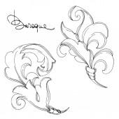 Vektorový barokní monogram květinový ornament. Černobílý rytý inkoust. Izolovaný ozdobný ilustrační prvek.