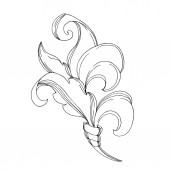 Fotografia Vector Baroque Monogram floral ornament. Black and white engraved ink art. Isolated ornament illustration element.