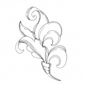 Fotografie Vector Baroque Monogram floral ornament. Black and white engraved ink art. Isolated ornament illustration element.