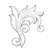 Vector Baroque Monogram floral ornament. Black and white engraved ink art. Isolated ornament illustration element.