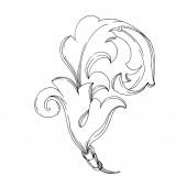 Fényképek Vektor barokk monogram virágdísz. Fekete-fehér vésett tinta művészet. Izolált díszítő illusztrációs elem.
