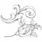 Vektor barockes Monogramm florales Ornament. Schwarz-weiß gestochene Tuschekunst. Isoliertes Monogramm-Illustrationselement.
