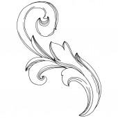 Fotografie Vektor barockes Monogramm florales Ornament. Schwarz-weiß gestochene Tuschekunst. Isoliertes Monogramm-Illustrationselement.