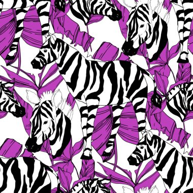 Vector Exotic zebra print wild animal isolated. Black and white engraved ink art. Seamless background pattern. Fabric wallpaper print texture. stock vector