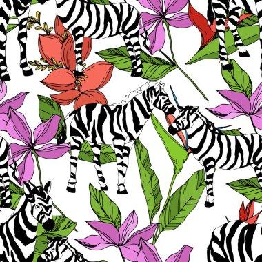 Vektör egzotik zebra izi izole edilmiş vahşi bir hayvan. Siyah beyaz işlemeli mürekkep sanatı. Kusursuz arkaplan deseni.