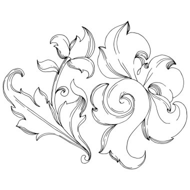 Vector Baroque monogram floral ornament. Baroque design isolated elements. Black and white engraved ink art. Isolated ornaments illustration element on white background. stock vector
