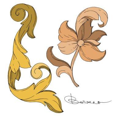 Vector Golden monogram floral ornament. Baroque design elements. Isolated ornament illustration element on white background. Black and white engraved ink art. clip art vector