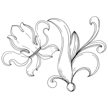 Vector Baroque monogram floral ornament. Baroque design isolated elements. Black and white engraved ink art. Isolated monogram illustration element. stock vector