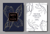Vector Summer beach seashell tropical elements. Engraved ink art