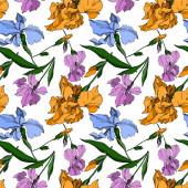 Fotografie Vector Iris floral botanical flowers. Black and white engraved i