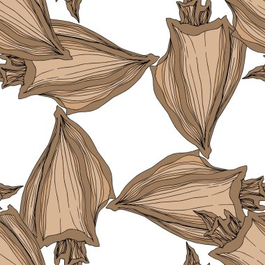 Vector Summer beach seashell tropical elements. Brown beige Engraved ink art. Seamless background pattern. Fabric wallpaper print texture on white background. clip art vector
