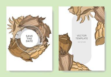Vector Summer beach seashell tropical elements. Beige brown engraved ink art. Wedding background card decorative border. Thank you, rsvp, invitation elegant card illustration graphic set banner. clip art vector