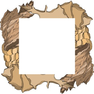 Vector Summer beach seashell tropical elements. Brown beige engraved ink art. Frame border ornament square on white background. clip art vector