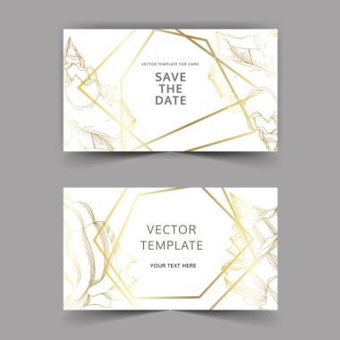Vector Summer beach seashell tropical elements. Black and white engraved ink art. Wedding background card decorative border. Thank you, rsvp, invitation elegant card illustration graphic set banner. clip art vector