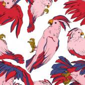 Vector Sky pták kakadu v divočině izolované. Černá a bílá