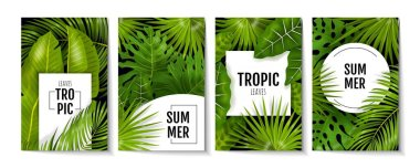 Tropic leaves posters. Exotic greenery and banana palm leaves, greeting cards and invitation flyers with monstera plants. Vector foliage banner design