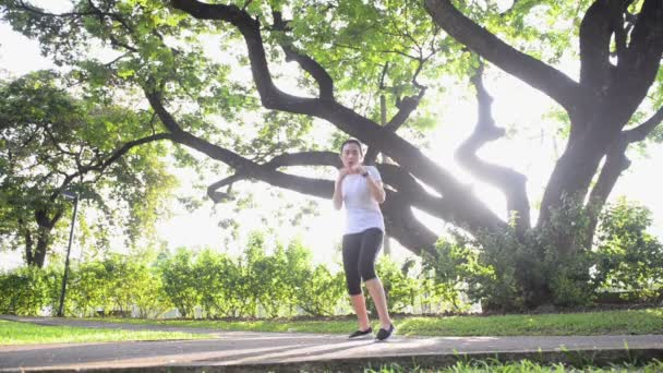 Asijské žena boxu zahřát v zeleném parku s velký strom a slunečního záření