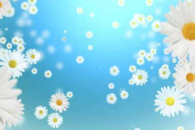 daisies on a blue background. Falling Daisies