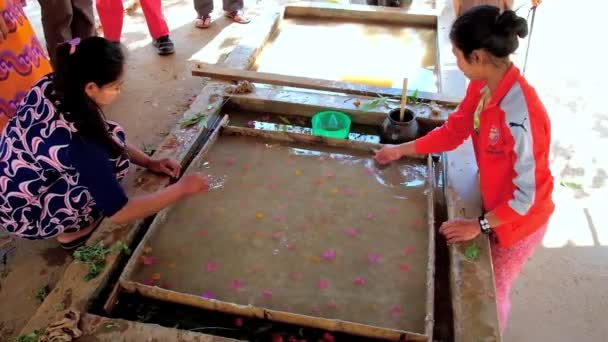 PINDAYA, MYANMAR - FEBRUARY 19, 2018:  The flower petals will create unique pattern on the handmade Shan paper, produced in traditional workshop by family of local artisans, on February 19 in Pindaya.