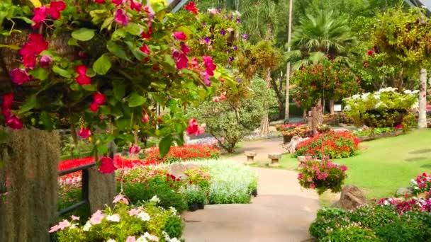 Spaziergang entlang der Allee des Ziergartens mit Blick auf hängende Töpfe mit Blumen, beschnittene Sträucher, saftigen Rasen und malerische Blumenbeete, mae fah luang garden, doi tung, chiang rai, Thailand