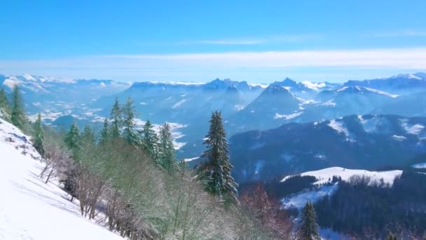Vychutnejte si malebný smrkový Les, pokrytý bílým mrazem a sledujte fantastickou alpskou krajinu z vrcholu Zwolferhorn, svatého Gildenu, Salzkammergut, Rakouska