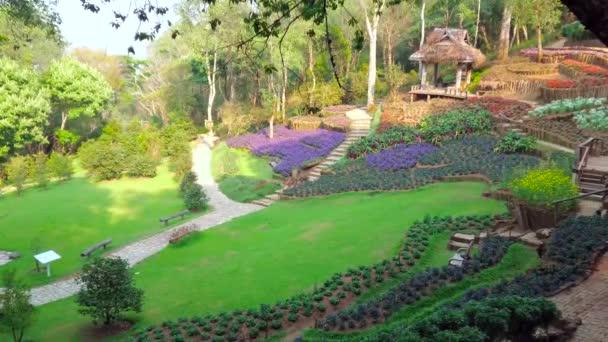 Projděte Mae Fah Luang Arboretum a užijte si okrasné květinové postele, šťavnatý trávník a stinný Les, Doi Chang Moob, Chiang Rai, Thajsko